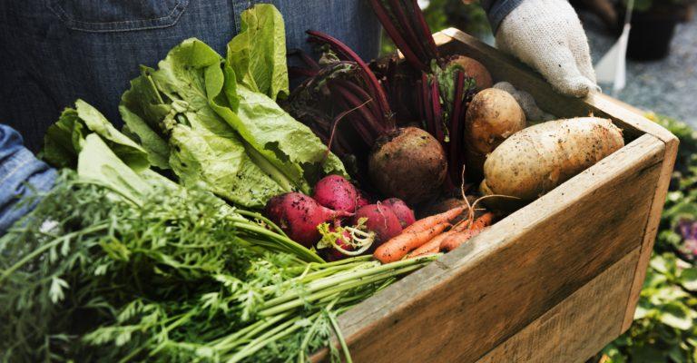 The Farmers Market on Bainbridge Island opens in April 2019