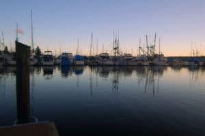 Sailboats In The Harbor a view from Bainbridge Island Restaurants